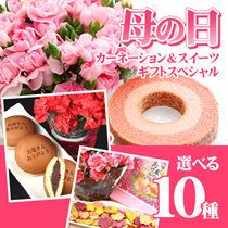 ★母の日 約10選べる 母の日 企画 カーネーションとお菓子のセット♪