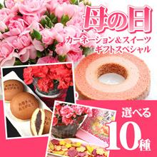 ★foodday特価!500円クーポン使えます!【母の日】約10選べる 母の日 企画 カーネーションとお菓子のセット♪