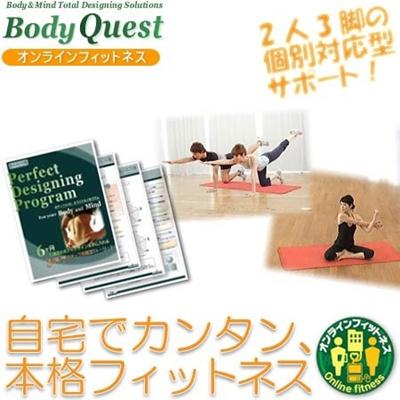 Body Quest(ボディクエスト) パーフェクトボディデザイニングプログラム スタンダードパッケージ BQ-standardの画像