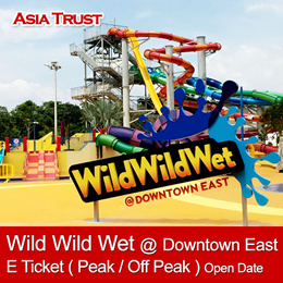 Wild Wild Wet Downtown East Water Park one day pass / eticket / admission pass / Open Date