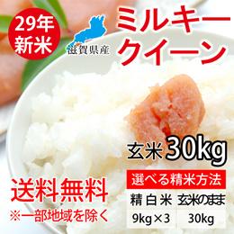 【送料無料※一部地域除く】26年度滋賀県産ミルキークィーン(2等米以上) 30Kg玄米 【精米無料】