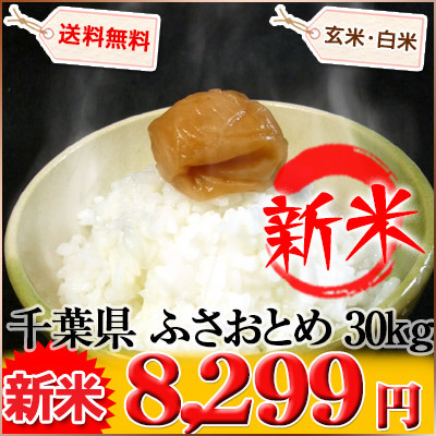 千葉県 新米 ふさおとめ 白米9kg×3袋か玄米30kg 平成27年産の画像