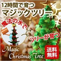 【メール便送料無料】 クリスマスツリー マジックツリー 『マジッククリスマスツリー』12時間で育つ不思議なクリスマスツリー★カラーは7色お好みでお好きなものをどうぞ♪【クリスマス】