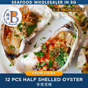 Half Shell Oyster l 12 pieces l 3-4 inches l Good for Steam Bake BBQ Grill l