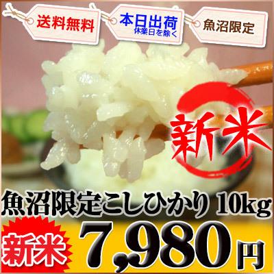 新潟県 魚沼 新米 白米 1等米 こしひかり 5kg×2袋 平成27年産の画像