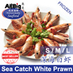 [All Big]Sea Catch White Prawn(500G)(Frozen)