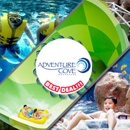 [Holiday Special]Adventure Cove Waterpark - RESORTS WORLD SENTOSA 水上探险乐园.Use your coupon to get the