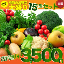 【送料無料】四国の田舎で取れた季節のお野菜、たっぷり15品盛りあわせ。詰め合わせ