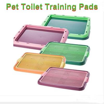 how to make a dog pee on a pad