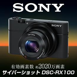 ★サイバーショット DSC-RX100