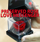 ★Mothers Day Gift Idea★ Preserved Rose Love Messenger / Lasting More Than 3 Years / Eternity Love to Your Loved Ones