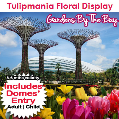 Garden By The Bay Admission Ticket buy gardensthe bay admission ticket. includes forest dome and