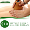 $10 for 60mins Fu Yang Guan/Gua Sha Therapy! Very Good Reviews!