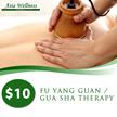 $10 for 60mins Fu Yang Guan/Gua Sha Therapy! Very Good Reviews!