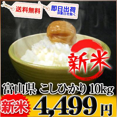 富山県 新米 白米 1等米 こしひかり 10kg×1袋か5kg×2袋 平成27年度産の画像