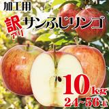 【加工用 山形サンふじリンゴ10KG】傷はありますが、味は絶品です♪山形県産サンふじりんご約10kg(24玉~56玉)【送料無料】 ※10/26までに発送させて頂きます。