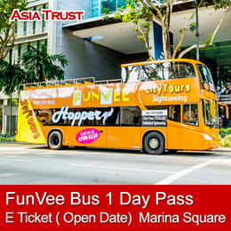 FunVee Open Top Bus 1 Day Hopper Pass E-Ticket admission 敞篷城市观光巴士