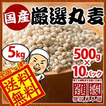【送料無料】カートクーポン利用でなんと1kg480円【5kg】国産 厳選丸麦5kg(500g×10袋) もちもちの丸麦 安心の国産