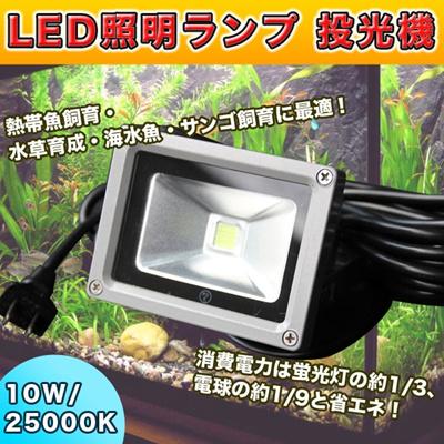 【レビュー記載で送料無料!】 LED照明ランプ 投光器10W/25000K 水草・熱帯魚・海水魚飼育 水槽用 パワーLEDライト ・ パワーLEDランプの画像