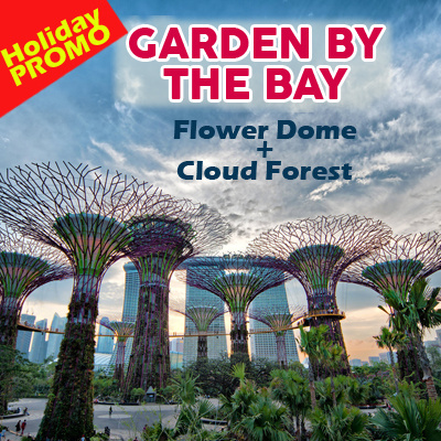 Gardens By The Bay Open Ticket (Flower Dome + Cloud