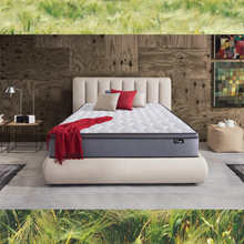 DELIVER BY CNY Medellin® [Pocketed Spring] 10inch Eurotop Pocketed Spring Mattress | Comfy Label