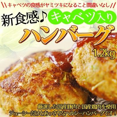 【送料無料】レンジで簡単調理!新食感♪キャベツ入りハンバーグ 60g×20個(1.2kg)★夏にぴったりのヘルシーハンバーグです!厳選した国産原材料を使用し手ごねで仕上げました!キャベツの食感と溢れる肉汁がヤミツキになること間違いなし!の画像