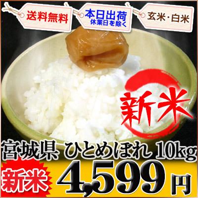宮城県 新米 白米か玄米か分搗き 1等米 特別栽培米 ひとめぼれ 10kg×1袋か5kg×2袋 平成27年産の画像
