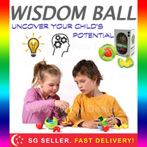 * Wisdom Ball * Educational Hand Brain Coordination Solving Puzzle Logic Analytical Fast Shipping