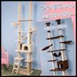キャットタワー 突っ張り 全面麻紐 爪研ぎ つっぱり猫タワー 全高229-255cm ハンモク 階段 梯子 多頭飼う キャットハウス 猫ベッド 隠れ家 おもちゃ おしゃれ