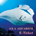 [Qoo10 Best Deal] SEA Aquarium Sentosa (Senior/Adult/Child) E-Ticket 海洋馆电子票
