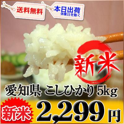 愛知県 新米 白米 こしひかり 内容量5kg 平成27年度産の画像