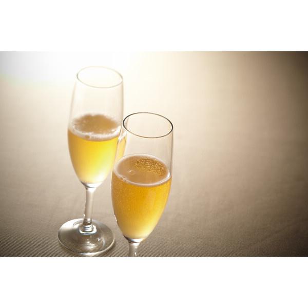 ビール・洋酒・日本酒・焼酎   フランス スパークリングワイン ギフト E-33  【直送品の為、代引き不可】