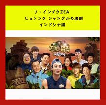 ソ・イングクZEA ヒョンシク ジャングルの法則 インドシナ編 全話 DVD-BOX 3枚組 日本語字幕