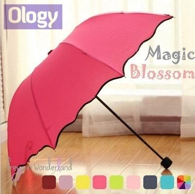 umbrella designs qoo10 12 designs magic blossom flowers cute umbrella with uv