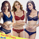 2015 New Design Causal Sexy Lace Bra/Europe Japan South Korea Bra Lingerie Set/Plus Size Underwear Panies A B C D E F G Cup/Over 200 Designs Bra Panty