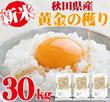 タイムセール特価【14営業日内発送】秋田のお米100% 黄金の穫り30kg(10kg袋×3袋でお届けします)生活応援米★ 米どころ秋田産の米100% 生産者自ら販売、発送する事で、お手軽なお値段を実現しました。少し小粒のお米になりますが、一般のお米同様に愛情を込めて作りました御米になります。ぜひ、ご賞味頂けましたら幸いです。 ※関東・東北送料無料 それ以外の地域は別途送料が掛かります※