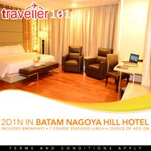 Batam Nagoya Hill Hotel Birdnest Shopping City Tour