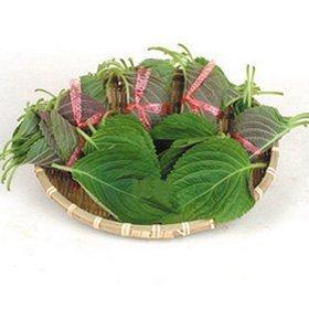 【韓国食品・韓国野菜】 ■エゴマの葉(1束20枚入り)生野菜■の画像
