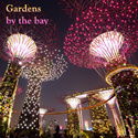 [New Year Special] Gardens by the bay open ticket 滨海湾花园 (Flower Dome + Cloud Forest)