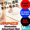 Creative!!! Diatomite Absorbent Mat / Bath Mat/ Dedicated Anti-Skid Pad/ Mouldproof/ Fast-Dry/