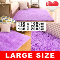 Large Size Carpet Living Room / Bedroom /Washable 1.2mx1.6m 1.4mx1.2m1.6mx2.3m [SG Seller]