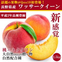 カートクーポン使えます!★話題の果物!ワッサークィーン2.5kg(約10~15個ほど)入り送料込みで3000円★ Qoo10初登場!★桃の甘さとネクタリンの食感が一度に楽しめる!送料無料