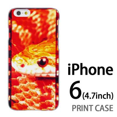iPhone6 (4.7インチ) 用『No2 42』特殊印刷ケース【 iphone6 iphone アイフォン アイフォン6 au docomo softbank Apple ケース プリント カバー スマホケース スマホカバー 】の画像