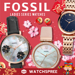 *APPLY 25% OFF COUPON* Fossil Leather and Stainless Steel Watches for Ladies! Free Shipping!