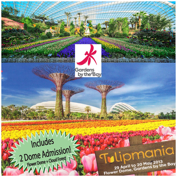 Garden By The Bay Admission Ticket buy gardensthe bay 2 in 1 super promo full day admission