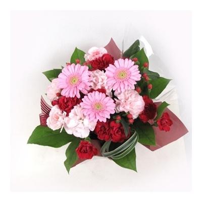 【母の日ギフト】赤ピンクアレンジ(A146G)★★感謝を伝える「カーネーションの花のギフト」*メッセージカード無料付き、お届けお時間指定サービス
