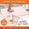 [Combo Offer] Authentic Japan Diatomite Mat /high absorbent / Bath floor Mat / Dedicated Anti-Skid