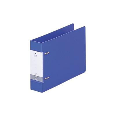 リヒトラブリクエストD型リングファイルA5E2穴青G2234-8