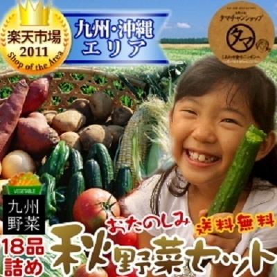【送料無料】九州野菜お試し詰め合わせセット★九州の美味しい野菜をタマチャンショップが選りすぐりで18品詰めてお届け(宮崎産たまご付き)★の画像