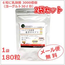 マルチナ乳酸菌菊芋のサプリ2袋 【1袋あたり4000円が2袋セットでなんと7600円!!】